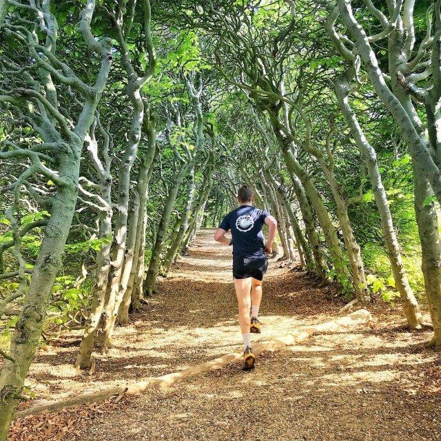 Saturday Trail Fever